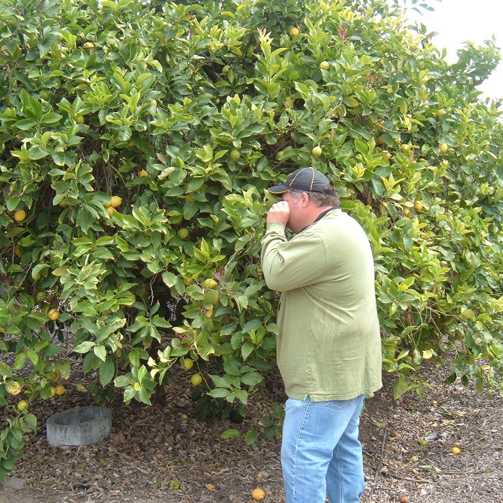 Pest Control Advisor